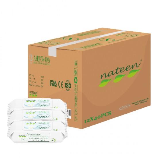 Absorba Nateen Adult Wipes with Aloe Vera, (12pack/carton)